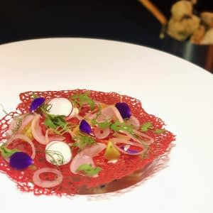 Ceviche with Red Tuille